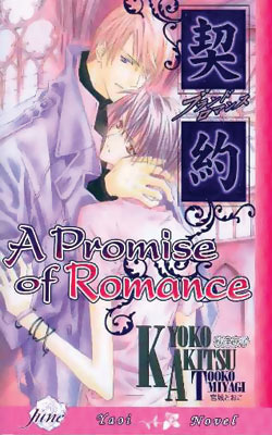 A Promise of Romance Novel (PM)
